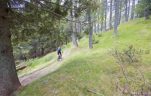 Monte Tamaro - On the traces of Lugano Bike